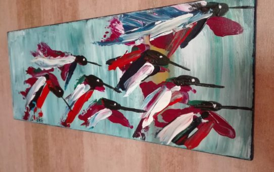 kolibry lot bydgoszcz eeve
